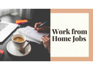 Great Opportunity PART TIME work Offline Home based job Data entry
